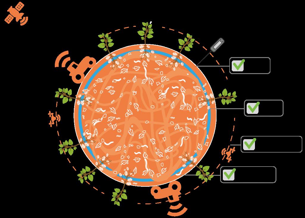 Omgevingsvisie FlevolandStraks beeld: netwerk innovatiemoto