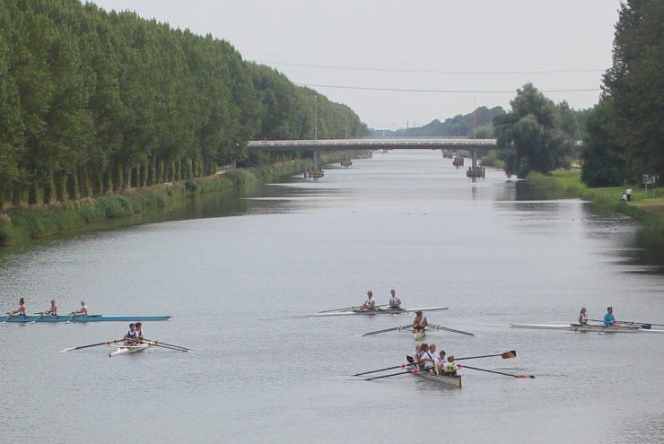 Roeiers in kanaal