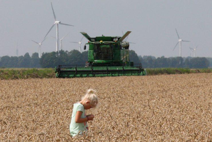 Twee kinderen in het graan met op de achtergrond een combine