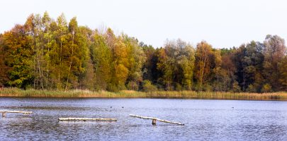 Natuurgebieden in Flevoland