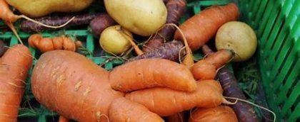 Kansen voor misvormde groenten