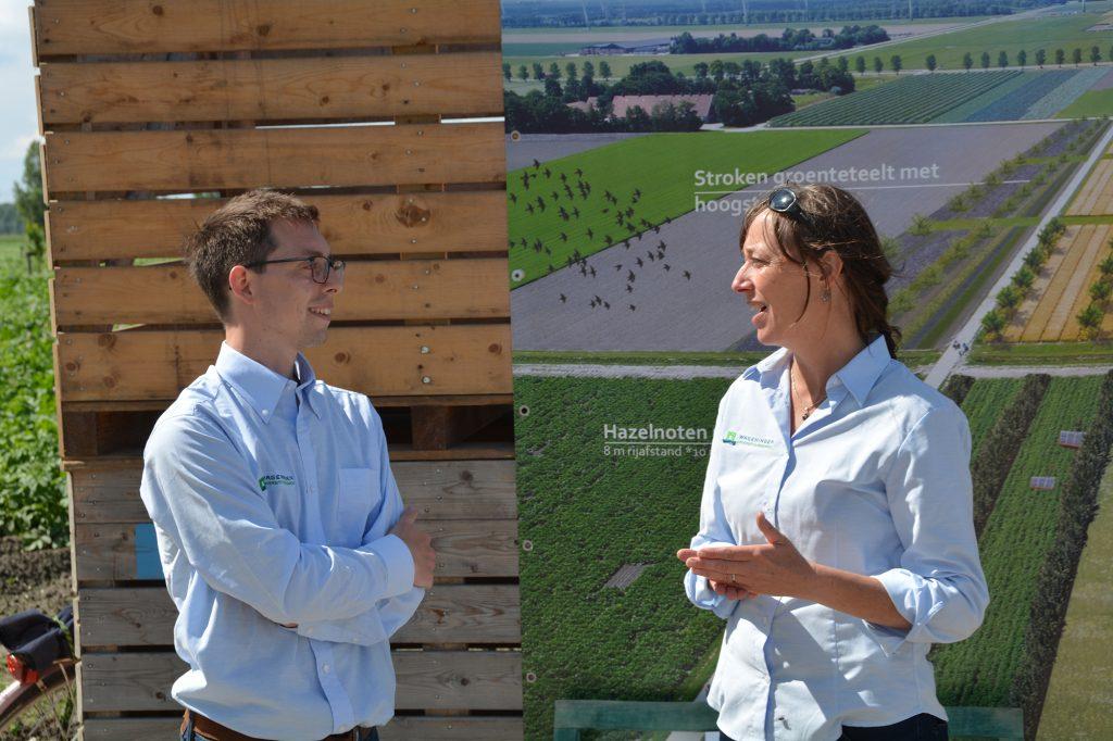 Bezoeker van biovelddag krijgt uitleg over agroforestry
