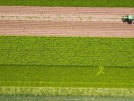 Eerste proeftuinen Landbouw Meerdere Smaken bekend