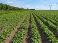 Inspiratie: kringlooplandbouw in de praktijk