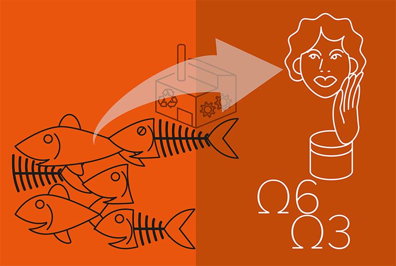 Verwerken van visresten tot producten voor medisch en cosmetisch gebruik.
